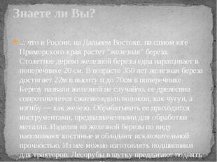 """... что в России, на Дальнем Востоке, на самом юге Приморского края растет """"ж"""