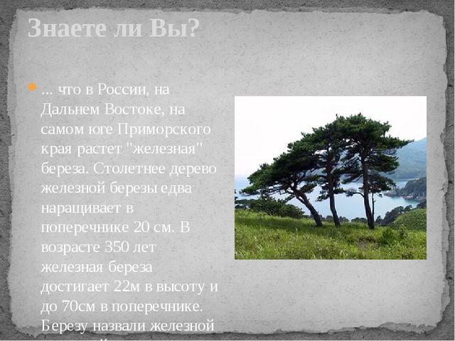 Знаете ли Вы? ... что в России, на Дальнем Востоке, на самом юге Приморского...