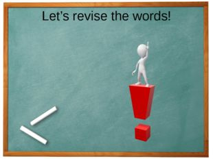 Let's revise the words!