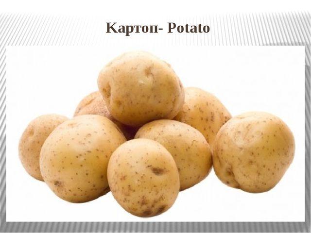 Kартоп- Potato