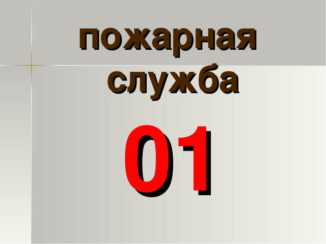 пожарная служба 01