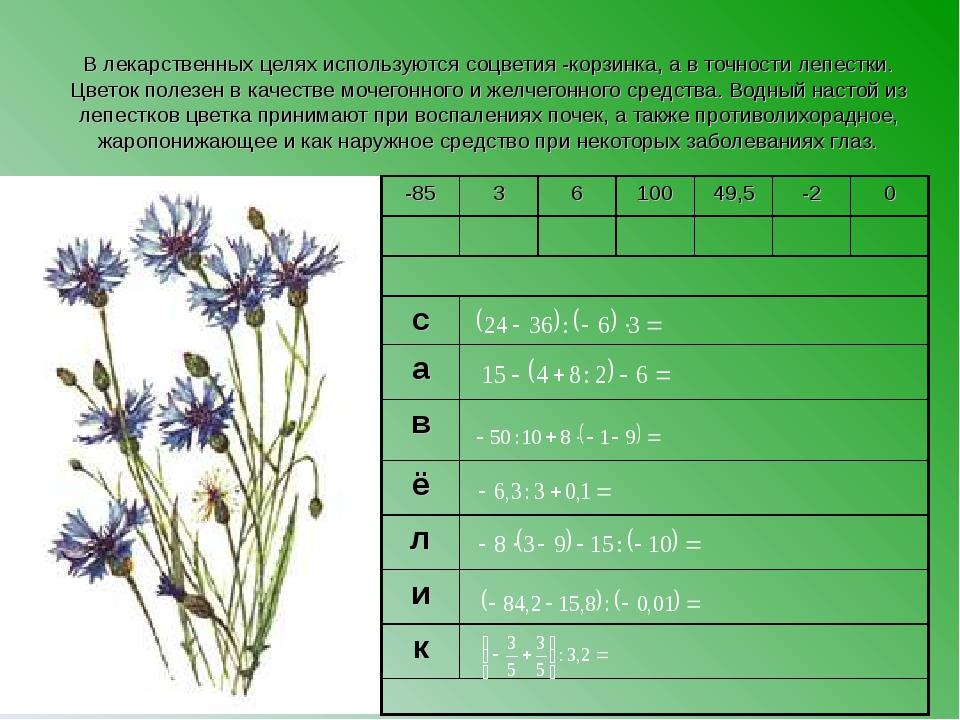 В лекарственных целях используются соцветия -корзинка, а в точности лепестки....