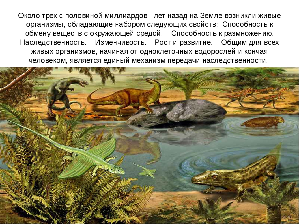 Около трех с половиной миллиардов лет назад на Земле возникли живые организ...