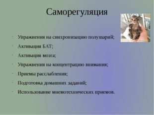 Саморегуляция Упражнения на синхронизацию полушарий; Активация БАТ; Активация