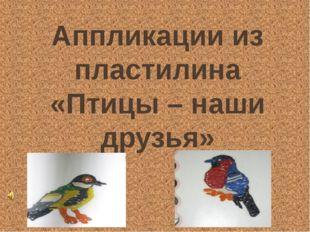 Аппликации из пластилина «Птицы – наши друзья»