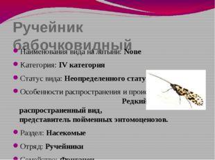 Ручейник бабочковидный Наименования вида на латыни: None Категория: IV катего
