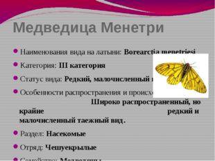 Медведица Менетри Наименования вида на латыни: Borearctia menetriesi Категори