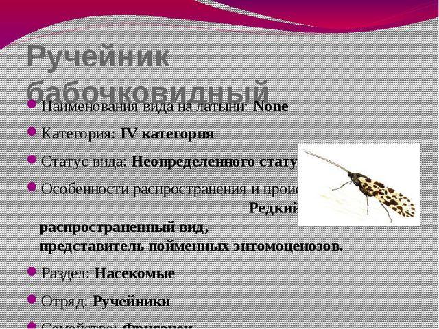 Ручейник бабочковидный Наименования вида на латыни: None Категория: IV катего...