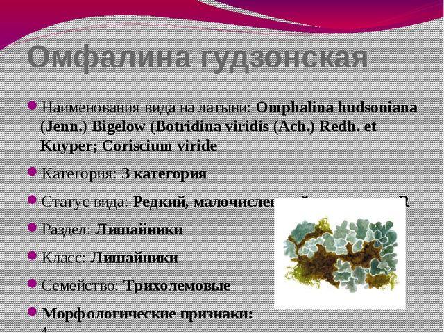 Омфалина гудзонская Наименования вида на латыни: Omphalina hudsoniana (Jenn.)...