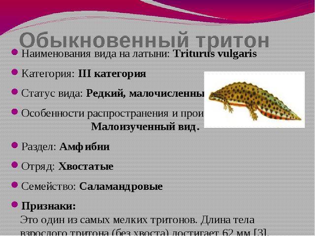 Обыкновенный тритон Наименования вида на латыни: Triturus vulgaris Категория:...