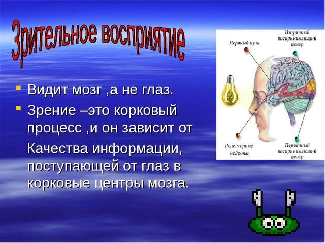 Видит мозг ,а не глаз. Зрение –это корковый процесс ,и он зависит от Качеств...