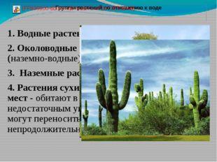 1. Водные растения 2. Околоводные растения (наземно-водные) 3. Наземные расте