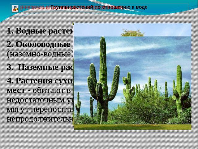 1. Водные растения 2. Околоводные растения (наземно-водные) 3. Наземные расте...