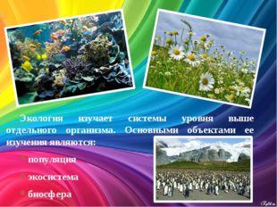 Экология изучает системы уровня выше отдельного организма. Основными объектам