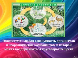 Экосистема - любая совокупность организмов и неорганических компонентов, в ко