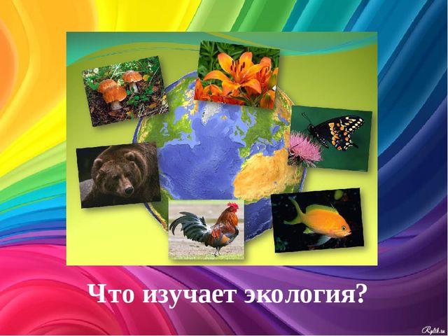 Что изучает экология?