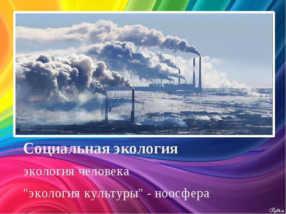 """Социальная экология экология человека """"экология культуры"""" - ноосфера"""