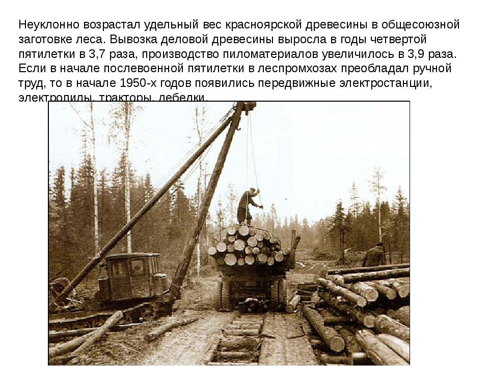 Неуклонно возрастал удельный вес красноярской древесины вобщесоюзной заготов...