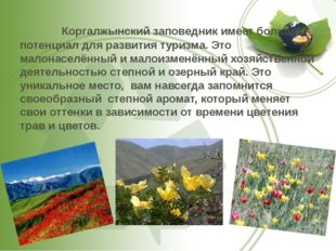 Коргалжынский заповедник имеет большой потенциал для развития туризма. Это м