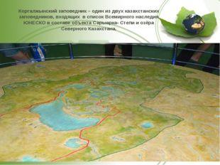 Коргалжынский заповедник – один из двух казахстанских заповедников, входящих