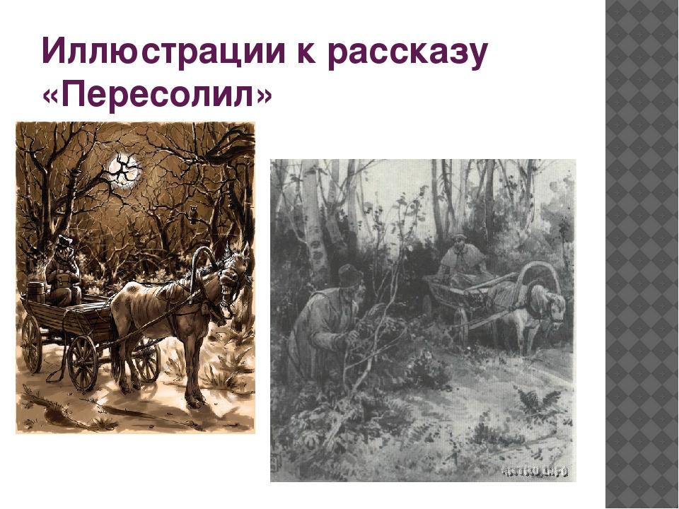 Иллюстрации к рассказу «Пересолил»