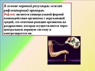 В основе нервной регуляции лежит рефлекторный принцип. Рефлексявляется униве