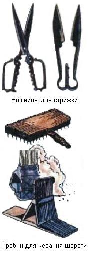 hello_html_77a8f8cb.jpg