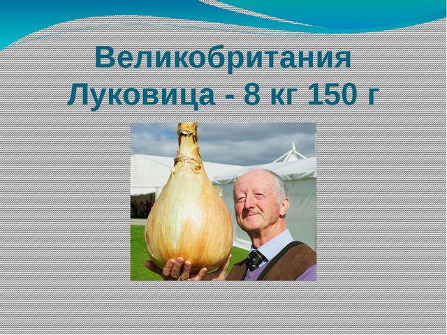 Великобритания Луковица - 8 кг 150 г