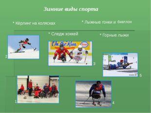 Зимние виды спорта * Лыжные гонки и * Горные лыжи * Следж хоккей * Кёрлинг на