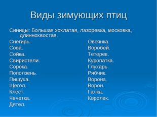 Виды зимующих птиц Синицы: Большая хохлатая, лазоревка, московка, длиннохвост
