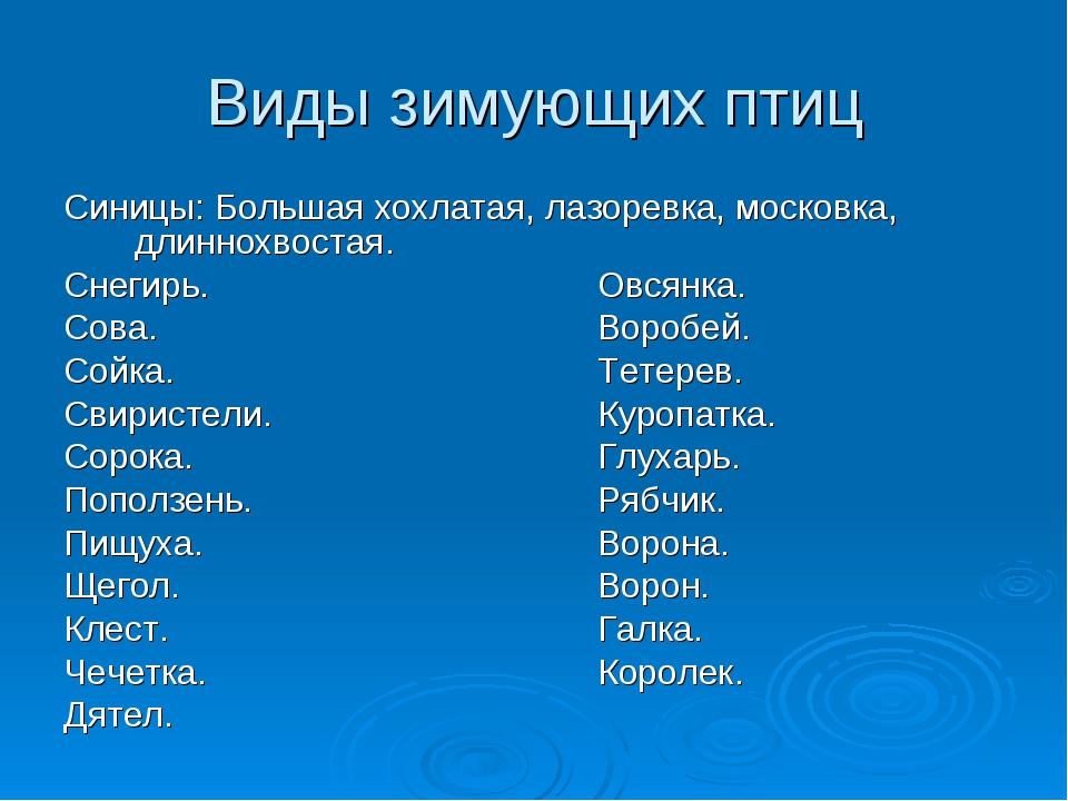 Виды зимующих птиц Синицы: Большая хохлатая, лазоревка, московка, длиннохвост...