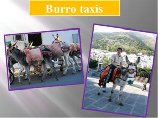 Burro taxis