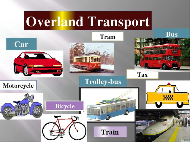 Overland Transport Car Bus Trolley-bus Bicycle Tram Tax Train Motorcycle