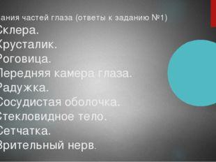 Названия частей глаза (ответы к заданию №1) 1. Склера. 2. Хрусталик. 3. Рогов