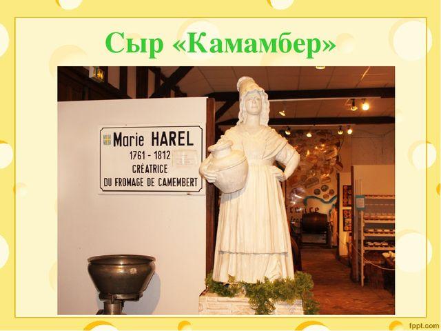 Сыр «Камамбер»