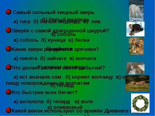 Самый сильный хищный зверь а) тигр б) белый медведь в) лев Зверёк с самой д...