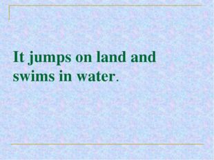 It jumps on land and swims in water.