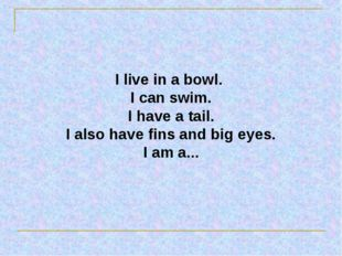 I live in a bowl. I can swim. I have a tail. I also have fins and big eyes. I