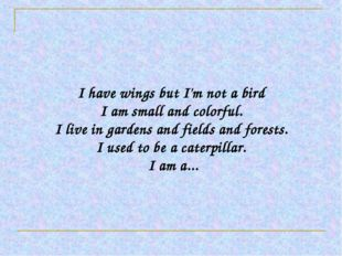 I have wings but I'm not a bird I am small and colorful. I live in gardens a