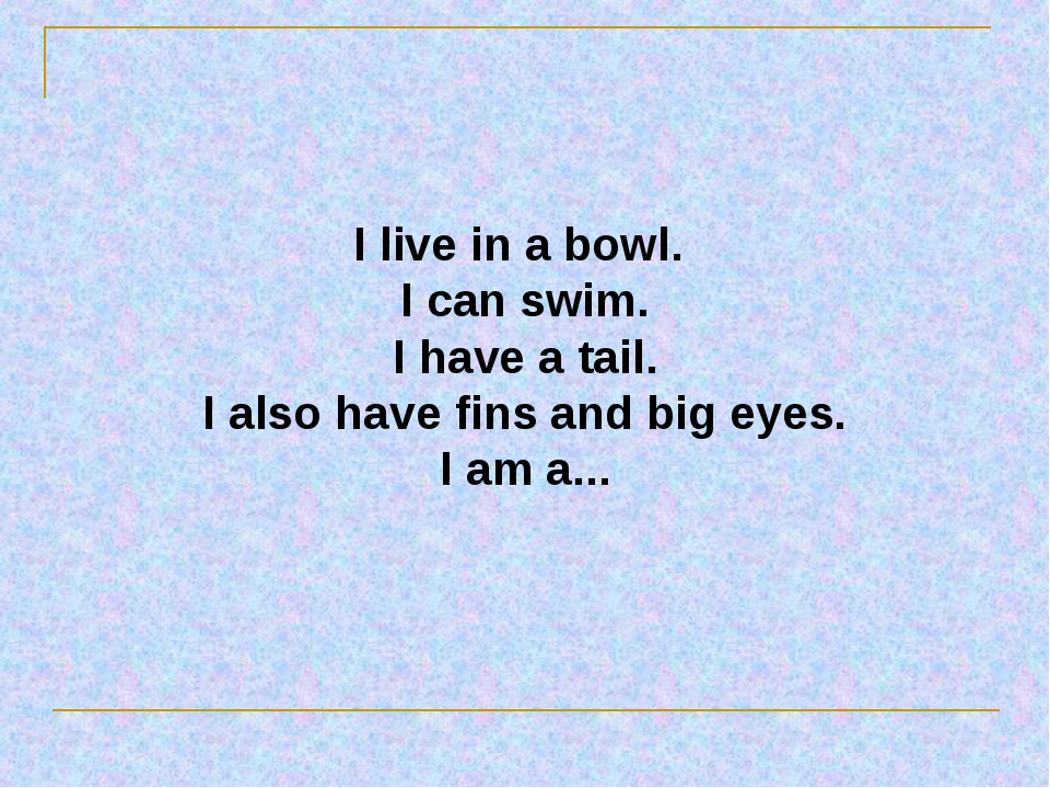 I live in a bowl. I can swim. I have a tail. I also have fins and big eyes. I...