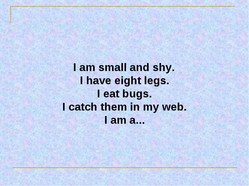 I am small and shy. I have eight legs. I eat bugs. I catch them in my web. I...