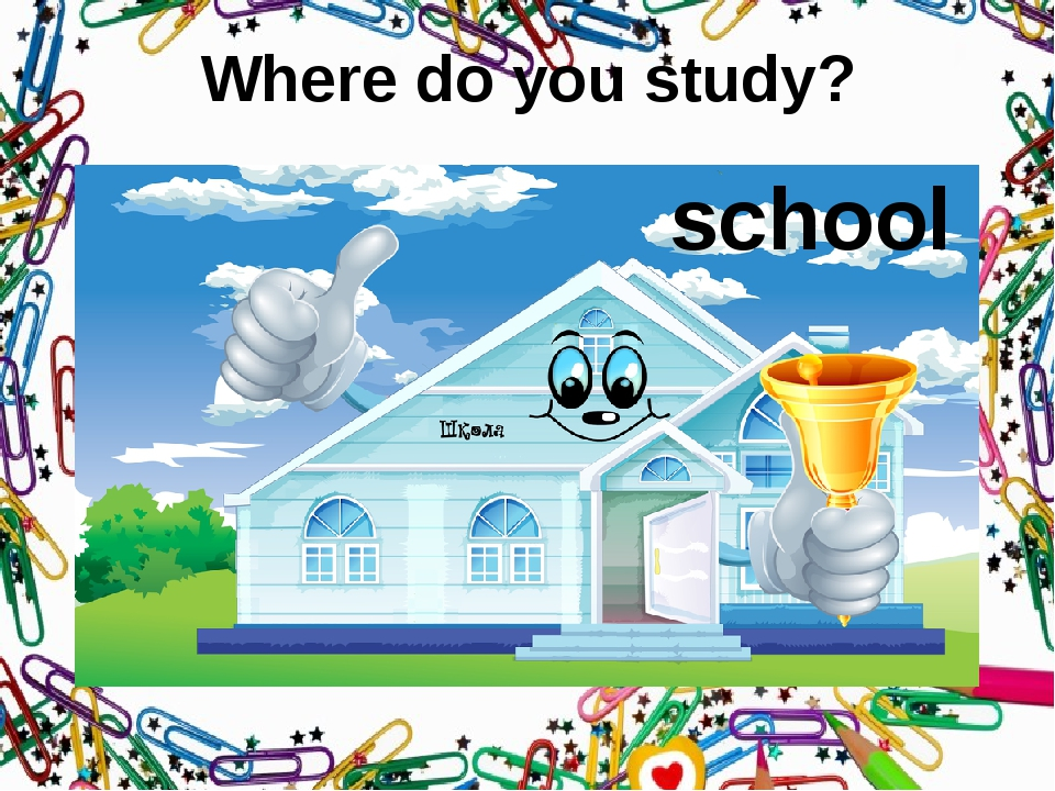 Where do you study? school