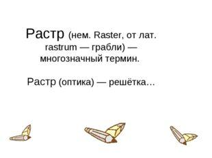 Растр (нем. Raster, от лат. rastrum — грабли) — многозначный термин. Растр (о