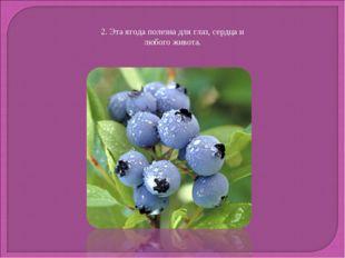 2. Эта ягода полезна для глаз, сердца и любого живота.
