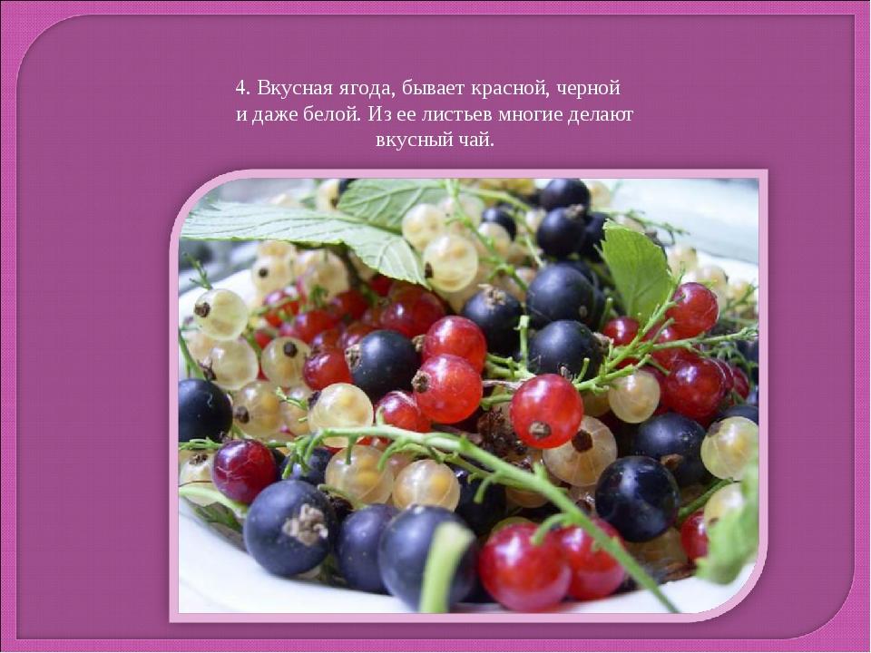 4. Вкусная ягода, бывает красной, черной и даже белой. Из ее листьев многие д...