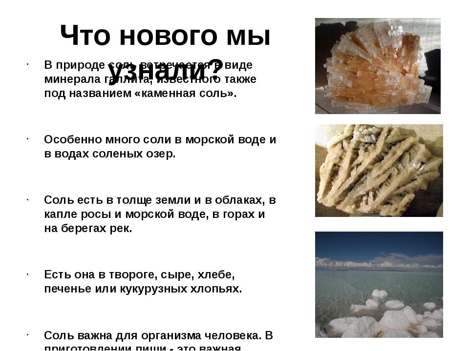 Что нового мы узнали? В природе соль встречается в виде минерала галлита, изв...