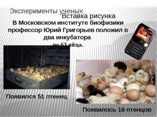 Эксперименты ученых В Московском институте биофизики профессор Юрий Григорьев