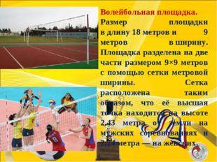 Волейбольная площадка. Размер площадки вдлину18метрови 9 метров вширину
