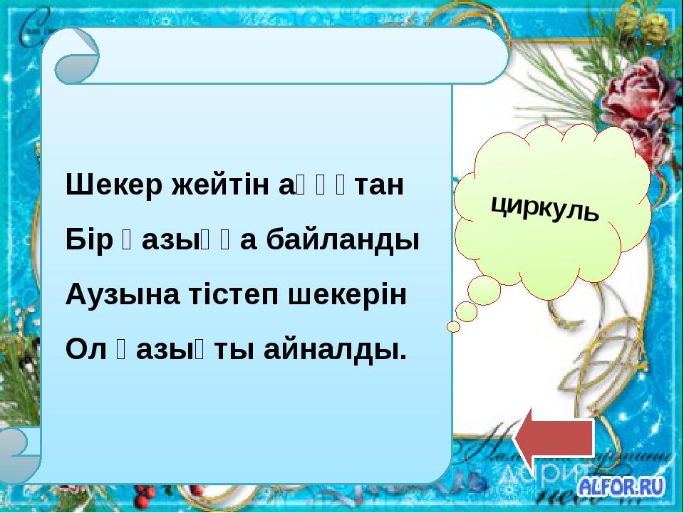Атам, әжем, ағаммен, Әкем, інім және мен, Анам және енесі, Енесінің бөлесі, О...
