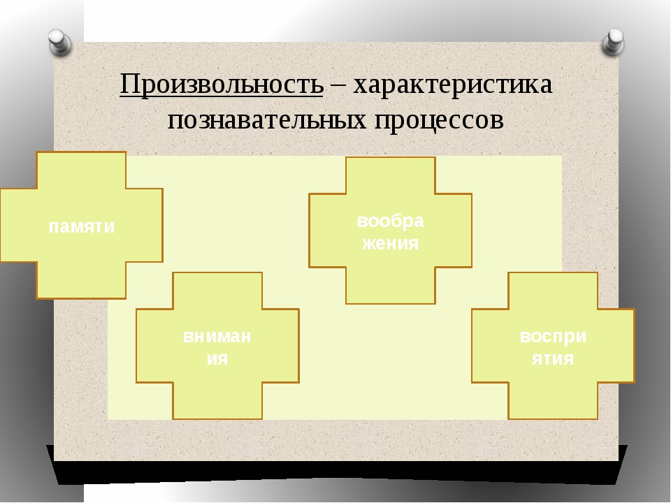 Произвольность – характеристика познавательных процессов внимания воображения...